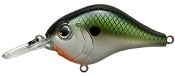 Bill Lewis MR-6 MDJ Series Crankbait Tennessee Shad