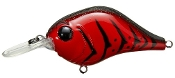Bill Lewis MR-6 MDJ Series Crankbait Blood Craw